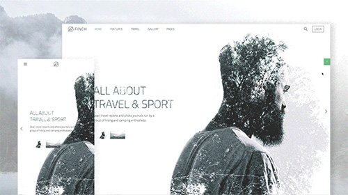 Tema Finch YooTheme - Template WordPress