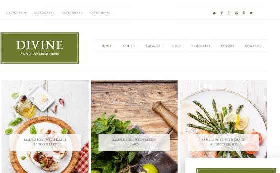 Tema Divine Pro - Template WordPress