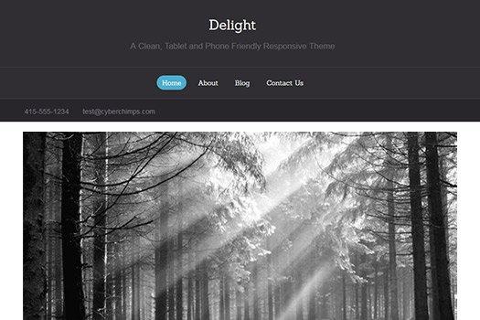 Tema Delight Cyberchimps - Template WordPress