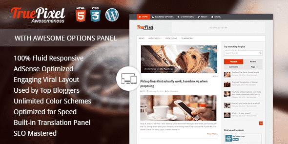 TEma TruePixel - Template WordPress