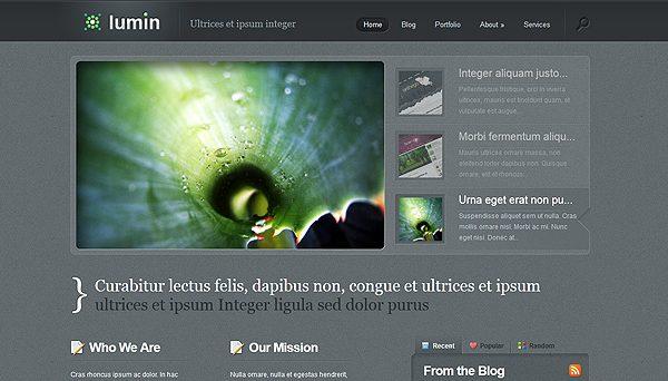 Tema Lumin ElegantThemes - Template WordPress