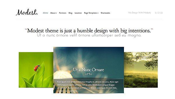 Tema Modest ElegantThemes - Template WordPress