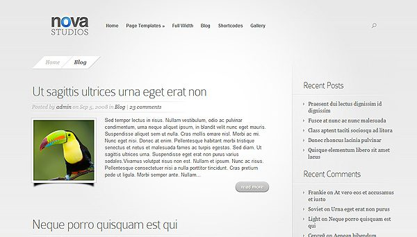 Tema Nova ElegantThemes - Template WordPress