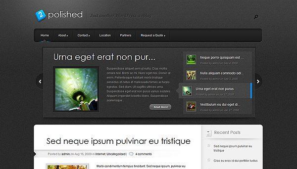 Tema Polished ElegantThemes - TEmplates WordPress