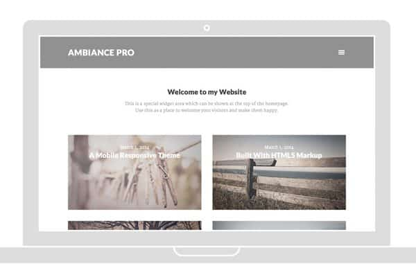 Tema Ambiance Pro - Template WordPress