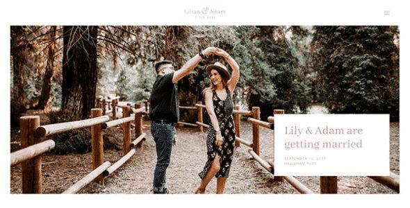 Tema Lilian - Template WordPress