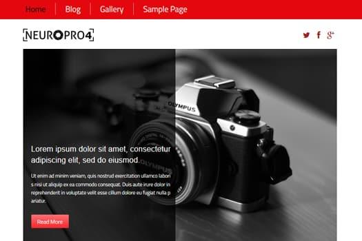 Tema Neuro Pro 4 - Template WordPress