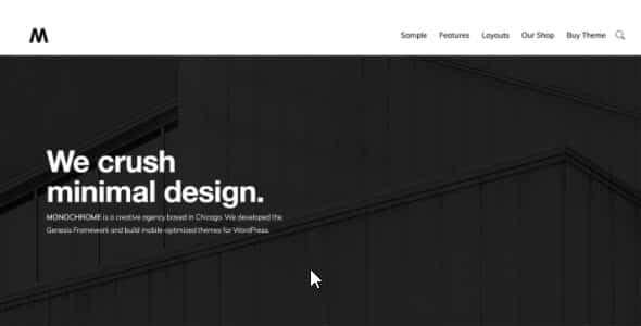 Tema Monochrome Pro - Template WordPress