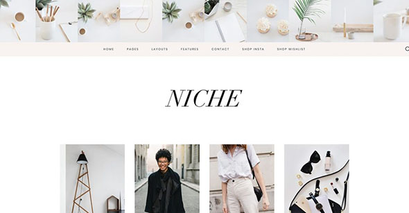 Tema Niche Pro - Template WordPress