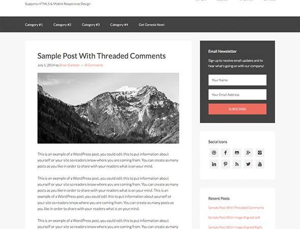 Tema Sample - Template WordPress