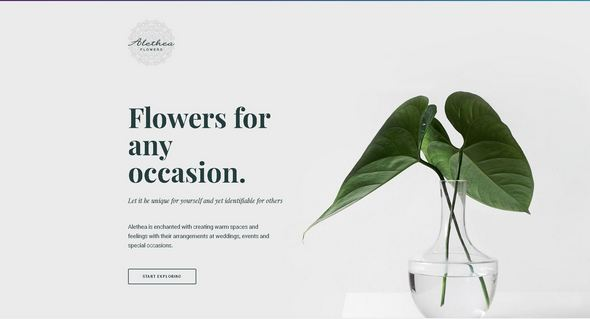 Tema Alethea Elementor - Template WordPress