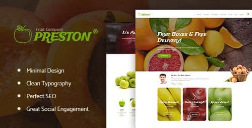 Tema Preston - Template WordPress