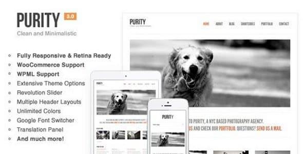 Tema Purity - Template WordPress