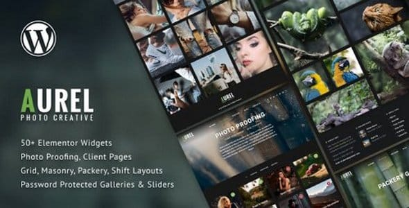 Tema Aurel - Template WordPress