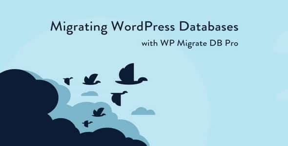 Plugin Wp Migrate Db Pro - WordPress