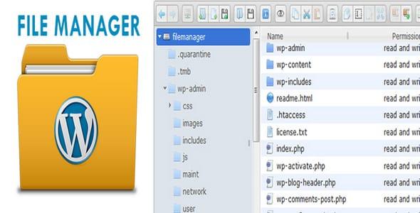 Plugin File Manager Pro - WordPress
